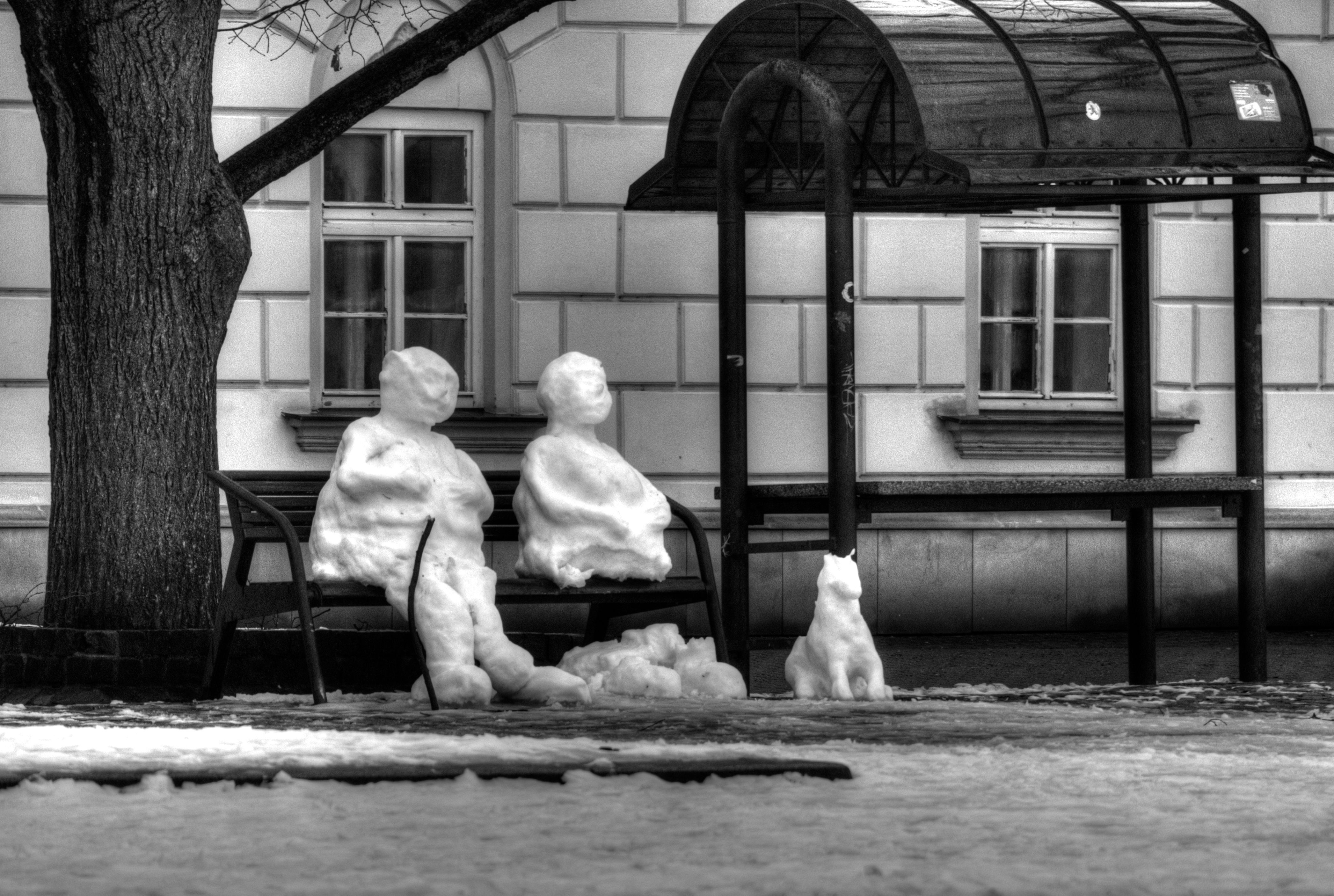 Sněhuláci na Masarykově náměstí