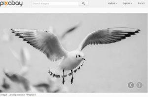 Free foto neboli fotografie zdarma na Pixabay